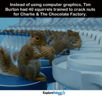Whoa! Who knew you could train a squirrel...: Instead of using computer graphics, Tim  Burton had 40 squirrels trained to crack nuts  for Charlie & The Chocolate Factory.  TalentA  Explore Whoa! Who knew you could train a squirrel...
