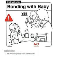 Memes, Shit, and Baby: Instructions:  Bonding with Baby  YES  NO  ha  well shit there goes my entire parenting plan I DIDNT KNOW THERE WAS MORE THAN ONE OMFG I CANT BREATEEEE
