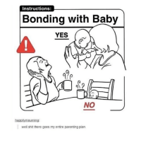 Memes, 🤖, and Eddsworld: Instructions:  Bonding with Baby  YES  NO  happily mourning:  well shit there goes my entire parenting plan okay so @ eddsworld fans,,, what's your favorite ship (if you have any) bc im curious. mine is probably paultryk or maybe tomtord but tordmatt is also good shit 👌👌👌