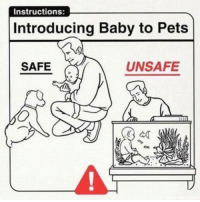 Here's a parenting tip for those not wanting to expose their children to dihydrogen monoxide.: Instructions:  Introducing Baby to Pets  UNSAFE  SAFE Here's a parenting tip for those not wanting to expose their children to dihydrogen monoxide.