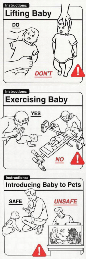Target, Tumblr, and Blog: Instructions:  Lifting Baby  DO  4  DON'T   Instructions:  Exercising Baby  YES  NO   Instructions:  Introducing Baby to Pets  SAFE  UNSAFE tinderofficial:  these look fine to me