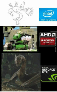 Memes, Intel, and Nvidia: intel  Intel HD Graphics  RADEON  GRAPHICS  NVIDIA  GEFORCE  GTX When choosing a graphics card. See the difference?