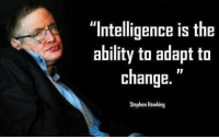 "Memes, Stephen, and Stephen Hawking: ""Intelligence is the  ability to adapt to  change.  Stephen Hawking"