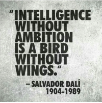 "Love, Memes, and Salvador Dali: ""INTELLIGENCE  WITHOUT  AMBITION  IS A BIRD  WITHOUT  WINGS.  SALVADOR DALI  1904-1989 Both go hand in hand. Love this message by @motivationmafia"