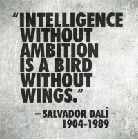 """Both go hand in hand. One without the other is nothing.: """"INTELLIGENCE  WITHOUT  AMBITION  S A BIRD  WITHOUT  WINGS.  SALVADOR DALI  1904-1989 Both go hand in hand. One without the other is nothing."""