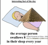 ♚ ♚ ♚ Backup: @dankery_memeicus_ii memes edgy furry picoftheday weed gaming 420 dank feminism smoke kek trump atheism instagood cringe love photography dankmemes rekt gta dancemoms deep cute emo politics marijuana memelord like4like lovequotes 4chan: interesting fact of the day  the average person  swallows 8  Great Pyramid of Giza Wik  https://en wikipedia.org/wikifGreat  in their sleep every year ♚ ♚ ♚ Backup: @dankery_memeicus_ii memes edgy furry picoftheday weed gaming 420 dank feminism smoke kek trump atheism instagood cringe love photography dankmemes rekt gta dancemoms deep cute emo politics marijuana memelord like4like lovequotes 4chan