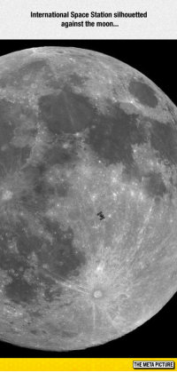 """Tumblr, Well Timed, and Blog: International Space Station silhouetted  against the moon..  THE META PICTURE <p><a href=""""https://epicjohndoe.tumblr.com/post/172726792464/incredibly-well-timed-shot"""" class=""""tumblr_blog"""">epicjohndoe</a>:</p>  <blockquote><p>Incredibly Well-Timed Shot</p></blockquote>"""