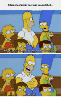 Internet, Tumblr, and Blog: Internet comment sections in a nutshell  You know, Homer its very easy  to  Criticize  Fun too lolzandtrollz:  Internet Comments