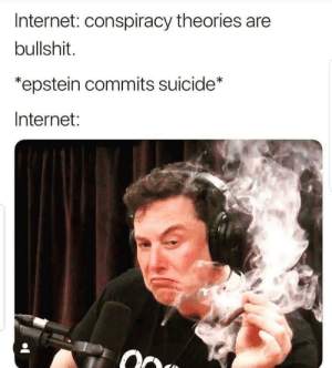 Internet, Suicide, and Bullshit: Internet: conspiracy theories are  bullshit.  epstein commits suicide*  Internet:  O Conspiracy you say