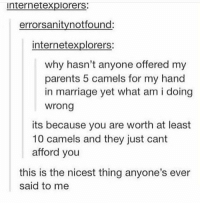 Marriage, Parents, and Why: internetexplorers:  errorsanitynotfound:  internetexplorers:  why hasn't anyone offered my  parents 5 camels for my hand  in marriage yet what am i doing  wrong  its because you are worth at least  10 camels and they just cant  afford you  this is the nicest thing anyone's ever  said to me https://t.co/UVmFN0lW5k