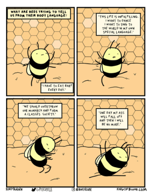 Interpreting Bee Dance: Interpreting Bee Dance