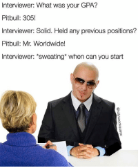 Memes, Pitbull, and 🤖: Interviewer: What was your GPA?  Pitbull: 305!  Interviewer: Solid. Held any previous positions?  Pitbull: Mr. Worldwide!  Interviewer: sweating when can you start You're hired, Mr. Bull. (Follow @hollywoodsquares)