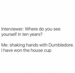 house cup: Interviewer: Where do you  yourself in ten years?  Me: shaking hands with Dumbledore.  I have won the house cup