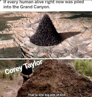 Aight Slipknot fans right here?: into the Grand Canyon.  Corey Taylor  That is one big pile of shit. Aight Slipknot fans right here?