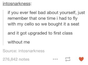 Well: intosnarkness:  if you ever feel bad about yourself, just  remember that one time i had to fly  with my cello so we bought it a seat  and it got upgraded to first class  without me  Source: intosnarkness  276,842 notes Well
