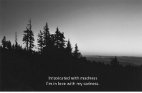 Love, Madness, and Sadness: Intoxicated with madness  I'm in love with my sadness.