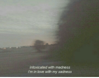Love, Madness, and Sadness: intoxicated with madness  i'm in love with my sadness