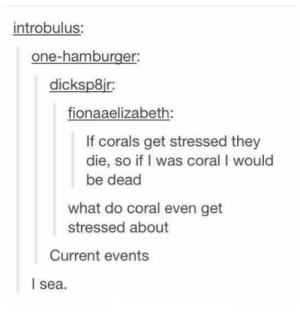 Punny, Current Events, and Hamburger: introbulus:  one-hamburger:  dicksp8ir:  fionaaelizabeth:  If corals get stressed they  die, so if I was coral I would  be dead  what do coral even get  stressed about  Current events  l sea Too punny to deal
