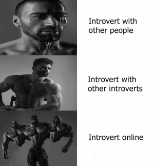Well I'm online now: Introvert with  other people  Introvert with  other introverts  Introvert online Well I'm online now