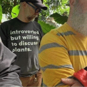 Meirl: introverted  but willing  to discuss  plants. Meirl