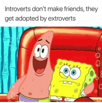 Dank, Friends, and 🤖: Introverts don't make friends, they  get adopted by extroverts Yes! 🤣