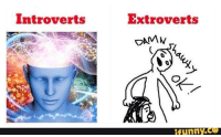 damn funny: Introverts  Extroverts  DAMN  funny.