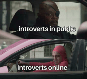 feck off: introverts in public  introverts online  aP S feck off