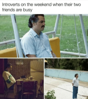 Meirl: Introverts on the weekend when their two  friends are busy Meirl