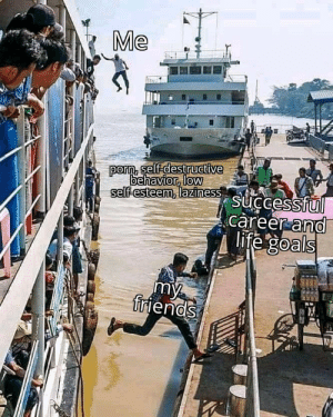 Invest before you touch the water via /r/MemeEconomy https://ift.tt/39Qm3l8: Invest before you touch the water via /r/MemeEconomy https://ift.tt/39Qm3l8