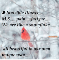 Beautiful, Memes, and Information: Invisible Illness...  M.S.... pain....fatigue...  We are like a snowflake  all beautiful in our own  unique way MS Memes and more Multiple Sclerosis Information    <3 <3 :)
