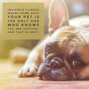 Memes, Okay, and Only One: INVISIBLE ILLNESS  MEANS SOME DAYS  YOUR PET IS  THE ONLY ONE  WHO KNOWS  YOU ARE HURTING.  AND THAT IS OKAY  InvisiblellinessWeek.com Invisible illness means some days your pet is the only one that knows you are hurting and that is okay.          #pet