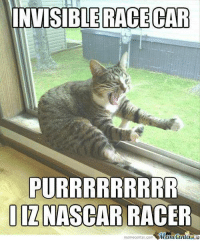 Meme Center: INVISIBLE RACECAR  PURRRRRRRRR  NASCAR RACER  memecenter-com