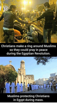 Respect, Revolution, and Egypt: ION GUIDE  Christians make a ring around Muslims  so they could pray in peace  during the Egyptian Revolution.  Muslims protecting Christians  in Egypt during mass. <p>No Matter Your Beliefs, Respect Always Comes First.</p>