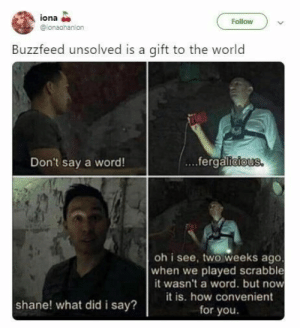 Crime, Memes, and youtube.com: iona  @ionaohanlon  Follow  Buzzfeed unsolved is a gift to the world  Don't say a word!  ...ferga  oh i see, two weeks ago  when we played scrabble  it wasn't a word. but now  it is. how convenient  shane! what did i say?  for you. We're mildly obsessed with Buzzfeed Unsolved right now, not gonna lie! #BuzzfeedUnsolved #YouTube #Crime #Paranormal #Memes #Buzzfeed #TVShow