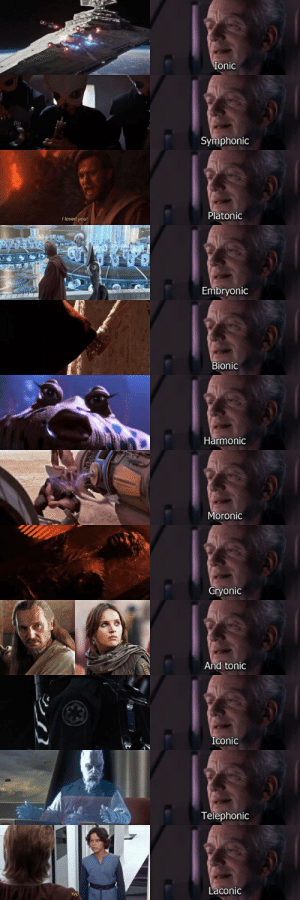 Palpatine sure has a vocabulary: Ionic  Symphonic  Platonic  youl  Embryonic  Bionic  Harmonic  Moronic  Cryonic  And tonic  Iconic  Telephonic  Laconic Palpatine sure has a vocabulary