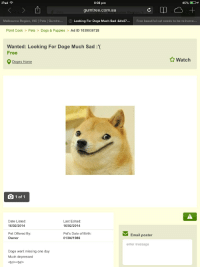 iPad F  45%  6:38 pm  gumtree com.au  Melbourne Region, VIC l Pets Gumtree  Looking For Doge Much Sad :&#x27  Free beautiful cat needs to be re-home..  Point Cook  Pets  Dogs & Puppies  Ad ID 1039038728  Wanted: Looking For Dog  Much Sad  Free  Watch  9 Doges Home  1 of 1  Date Listed:  Last Edited  16/02/2014  16/02/2014  Pet Offered By:  Pet's Date of Birth:  Email poster  Owner  01/04/1986  enter message  Doge went missing one day  Much depressed  <br/><br/> Looks like someone has already left for the moon!