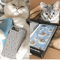 """iPhone 6/6s Plus @white_coffee_cat_ and I ❤️ Phone cases available online www.nalacat.com Use coupon code """"Xmas15"""" for 15% off🎁🎅🏻🎄"""
