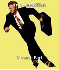 Lawyer, Life, and Fart: Ir  a deposition  Sneez  e Fart My life as a lawyer: Sneeze farts and dead cows