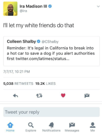 Blackpeopletwitter, Friends, and Twitter: Ira Madison III  @ira  I'll let my white friends do that  Colleen Shalby@CShalby  Reminder:It's legal in California to break into  a hot car to save a dog if you alert authorities  first twitter.com/latimes/status...  7/7/17, 10:21 PM  5,038 RETWEETS 19.2K LIKES  Tweet your reply  Home  Explore Notifications Messages  Me <p>That&rsquo;s a solid decision. (via /r/BlackPeopleTwitter)</p>