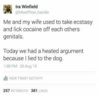Dank, 🤖, and Ira: Ira Winfield  @Meat Plow handle  Me and my wife used to take ecstasy  and lick cocaine off each others  genitals.  Today we had a heated argument  because I lied to the dog  1:38 PM 25 Aug 15  ill VIEW TWEET ACTIVITY  257  RETWEETS  381  LIKES The good ol' days