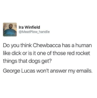 Chewbacca, Dogs, and Tumblr: Ira Winfield  @MeatPlow handle  Do you think Chewbacca has a human  like dick or is it one of those red rocket  things that dogs get?  George Lucas won't answer my emails. the-memedaddy:  meirl
