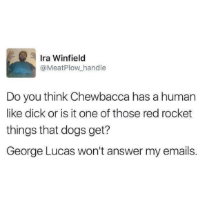 Chewbacca, Dank, and Dogs: Ira Winfield  @MeatPlow handle  Do you think Chewbacca has a human  like dick or is it one of those red rocket  things that dogs get?  George Lucas won't answer my emails. meirl by Catric4 MORE MEMES