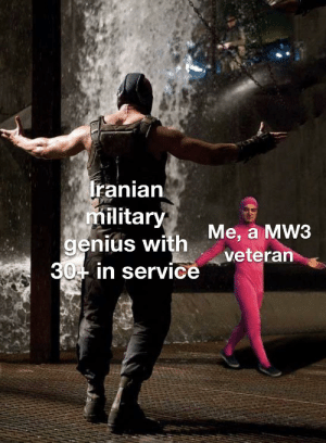 Get Pwnd Noob: Iranian  military  genius with  30- in service  Me, a MW3  veteran Get Pwnd Noob