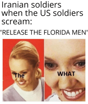 "They could fight an entire army and win without anyone of them killed: Iranian soldiers  when the US soldiers  scream:  ""RELEASE THE FLORIDA MEN""  WHAT  The They could fight an entire army and win without anyone of them killed"