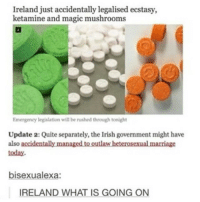 Marriage, Ireland, and Magic: Ireland just accidentally legalised ecstasy,  ketamine and magic mushrooms  Emergency legislation will be rushed through tonight  Update 2: Quite separately, the lrish government might have  also accidentally managed to outlaw heterosexual marriage  today.  bisexualexa:  IRELAND WHAT IS GOING ON Moving