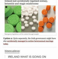 : Ireland just accidentally legalised ecstasy,  ketamine and magic mushrooms  Emergency legislation will be rushed through tonight  Update 2: Quite separately, the Irish government might have  also accidentally managed to outlaw heterosexual marriage  today  bisexualexa:  IRELAND WHAT IS GOING ON