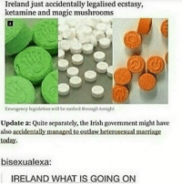 Marriage, Memes, and Ireland: Ireland just accidentally legalised ecstasy,  ketamine and magic mushrooms  Emerseny legislation will be nuwhed through tonight  Update 2: Quite separately, the lrish govemment might have  also accidentally managed.tooutlawheterosexual marriage  today.  bisexualexa:  IRELAND WHAT IS GOING ON Ireland you okay (This was a couple years ago)