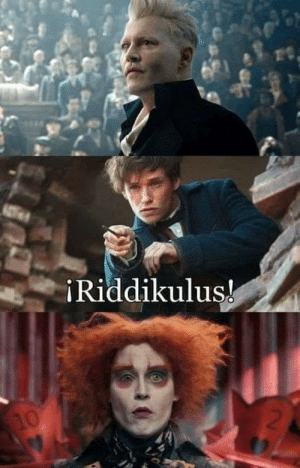 Someone asked for more Harry Potter memes here..: iRiddikuluş!  2  10 Someone asked for more Harry Potter memes here..
