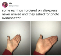 This evidence is admissible.: iris  @irispompei  some earrings i ordered on aliexpress  never arrived and they asked for photo  evidence??? This evidence is admissible.