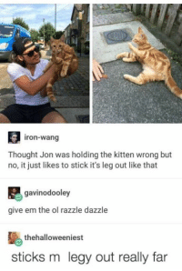 ~Kingslayer of Nerd Therapy  Checkout : Pokémon GO: iron-wang  Thought Jon was holding the kitten wrong but  no, it just likes to stick it's leg out like that  gavinodooley  give em the ol razzle dazzle  thehalloweeniest  sticks m legy out really far ~Kingslayer of Nerd Therapy  Checkout : Pokémon GO